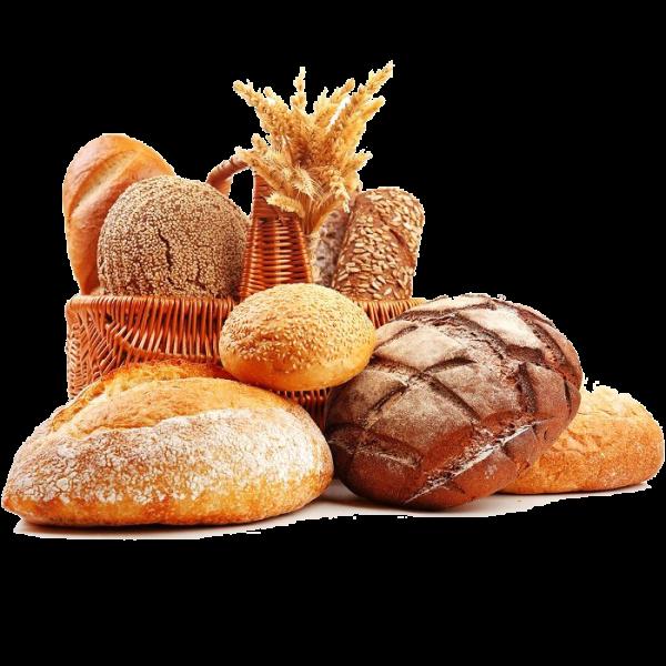 Panadería Galletas y Dulces